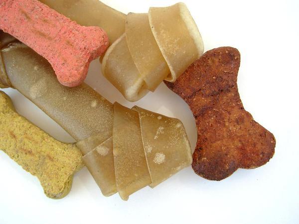 popularne mokre karmy dla psów