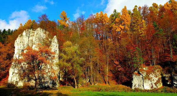 atrakcje w ojcowskim parku narodowym