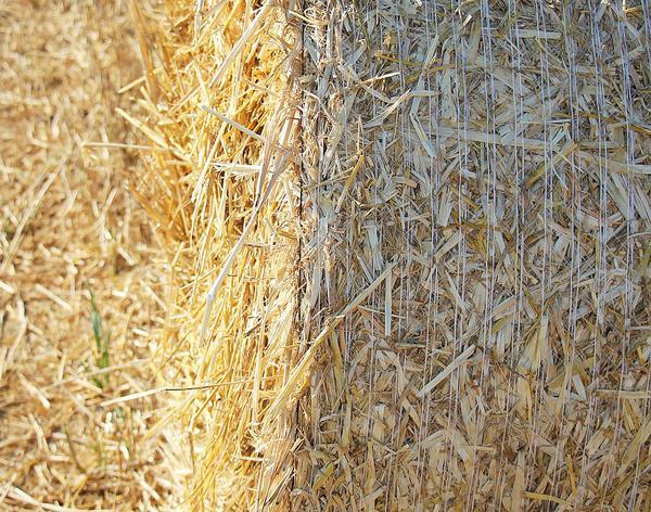 polecany sznurek rolniczy